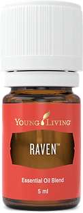 Raven ätherisches Öl mit reinigender Wirkung Aschach an der Donau Young Living
