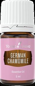 deutsche Kamille ätherisches Öl Aschach an der Donau Young Living