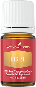 ätherisches Öl Digize Verdauungsöl Young Living