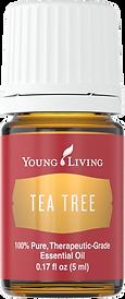 ätherisches Öl Teebaum Reinigung