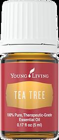Teebaum ätherisches Öl Aschach an der Donau Young Living