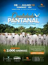 08-07_-_LEILÃO_ESPECIAL_QUALIDADE_PANTA