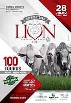 28-07_-_LEILÃO_REPRODUTORES_NELORE_LION