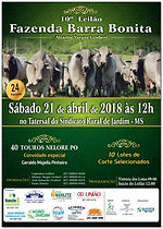 21-04_-_10º_LEILÃO_FAZENDA_BARRA_BONIT
