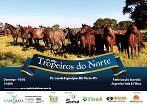 10-06_-_LEILÃO_TROPEIROS_DO_NORTE-PARQU