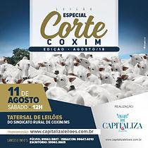 11-08_-_ESPECIAL_CORTE_COXIM_EDIÇÃO_-_