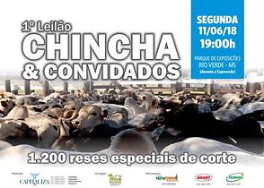 11-06_-_LEILÃO_DE_CORTE_CHINCHA_E_CONVI