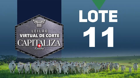 Lote +2R