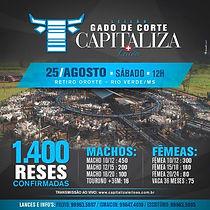 25-08_-_1324º_-_LEILÃO_ESPECIAL_DE_GAD