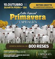10-10_-_LEILÃO_ESPECIAL_PRIMAVERA_-_RIO