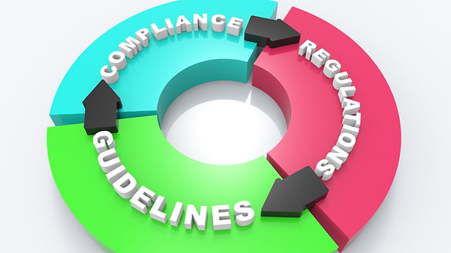 Next Level Consulting_Regulatory Compliance Audit_Desktop.jpg