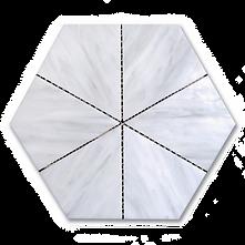 Aster - Tundra Transparent.png