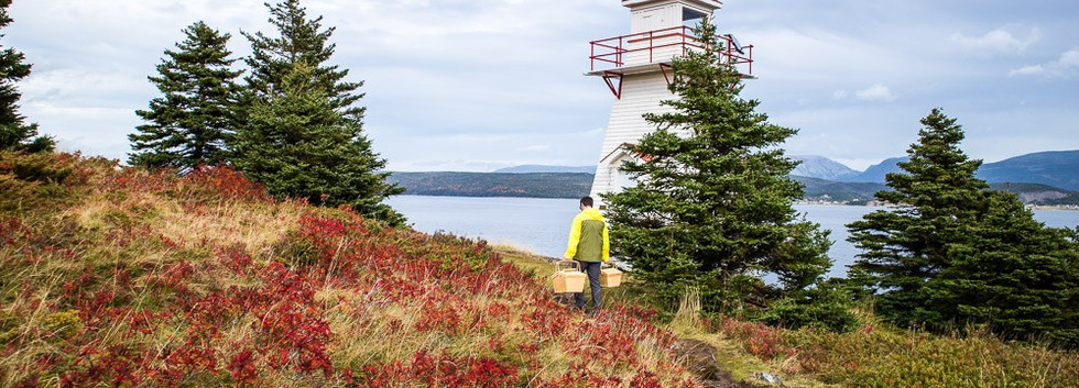 Woody Point Lighthouse Picnic.jpg