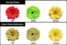 color blind-3.jpg