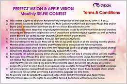 apple vision selfie contest-Terms & Cond