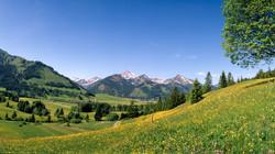 Landschaft-Tannheimer-Tal