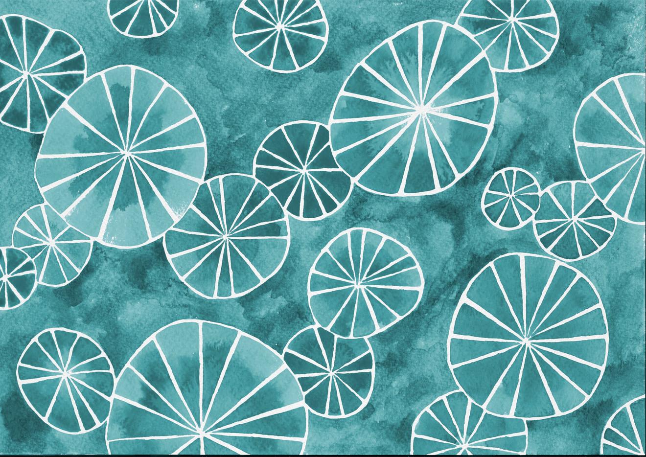 """Sea Urchins 3"""