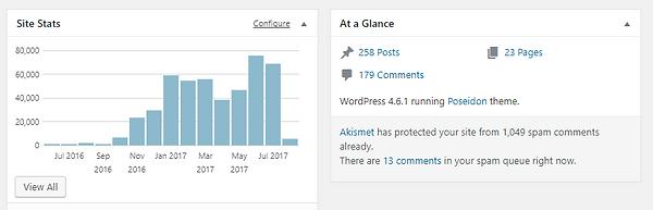 Wordpress Stat 1 Year.PNG