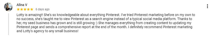 Pinfinite Marketing Review 1.PNG