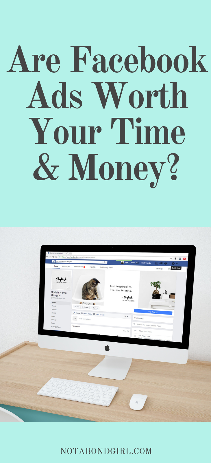 FaceBook Ads: Is it Worth the Time + Money?