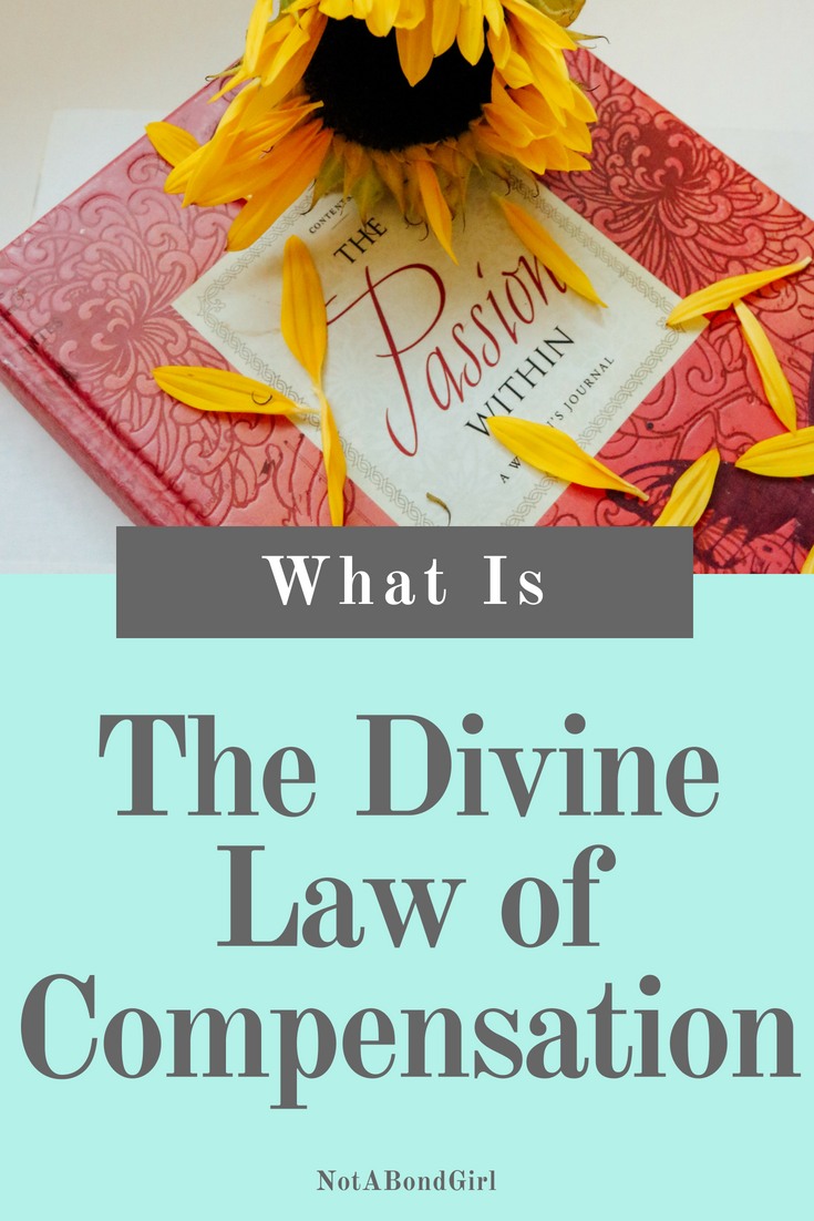 What is The Divine Law of Compensation, best 30 quotes, marianne williamson