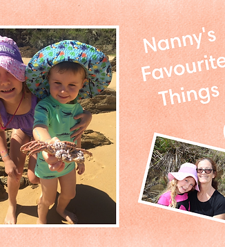 Nanny's Favourite Things cover.png