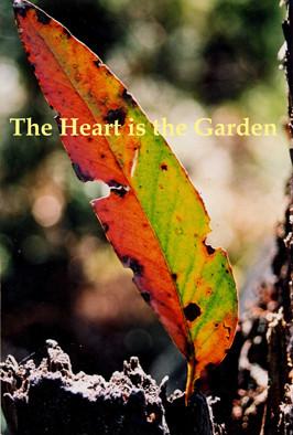 leaf_for_heart_cover.jpg