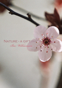Nature - a gift cover