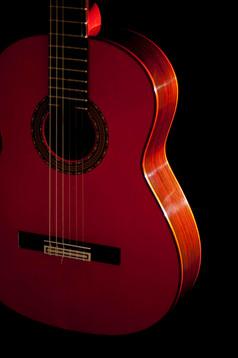 FlamencoNegra_147.jpg