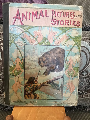 Animal Pictures and Stories Book
