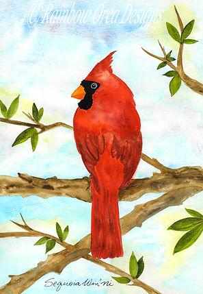 reduced Cardinal Beauty edit 4.5x.5 rati