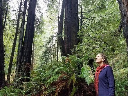 Wendy in Redwoods.jpg