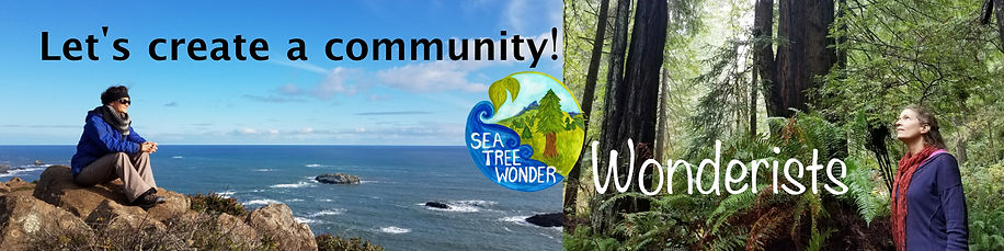 Sea Tree Wonder Patreon Banner Oct 2019.