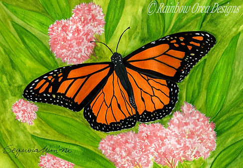 reduced Monarch Butterfly 4.5x6.5 ratio