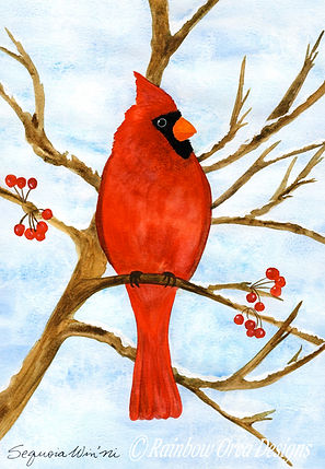 reduced Winter's Red Comfort Cardinal cr