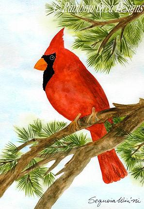 reduced Cardinal's Pine Perch 4.5x6.5 ra