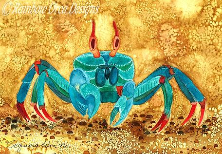 reduced Blue Crab ET 2750 4.5x6.5 ratio