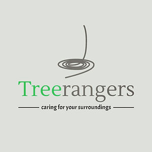 Treerangers Tree Surgeon