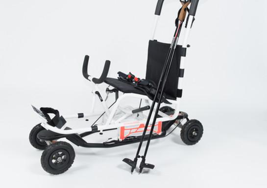 AGILEX S4 (Planche à roulettes)