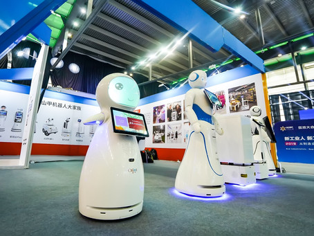 What are Professional Service Robots?