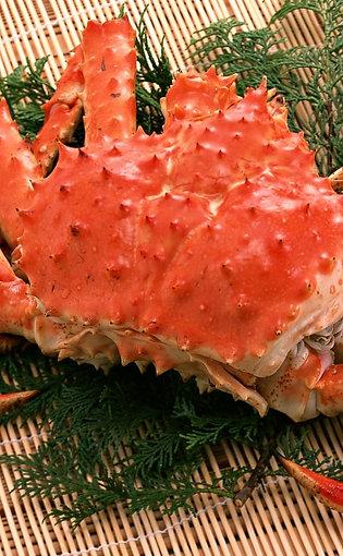 智利原隻帝皇蟹(約1.4公斤)