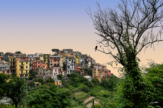 Cinq Terres - Corniglia
