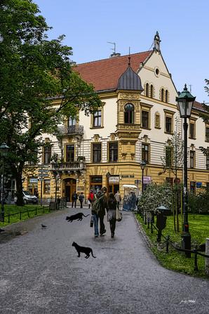 Pologne - Cracovie