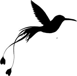 oiseau_4.png