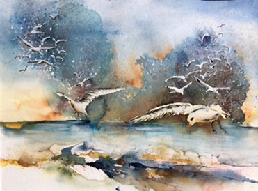 Sylvia Dafour - Les goélands de l'île Dumet