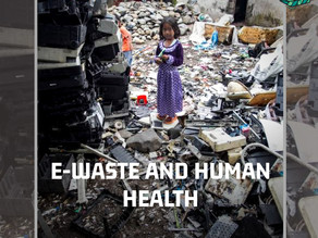 E-waste pollution and human health