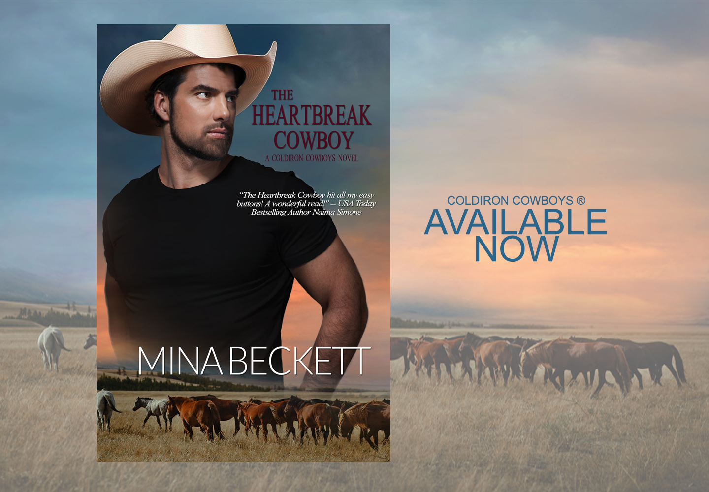 THE HEARTBREAK COWBOY 2PNG SLIDER FOR WE
