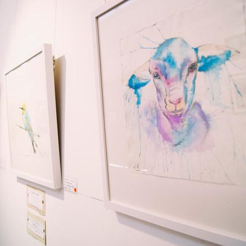 Mitchell on Maranoa Gallery