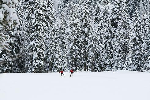 nordic-skiing-coaches.jpg