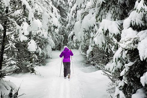 ski-coach.jpg